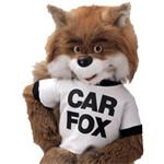 Carfox